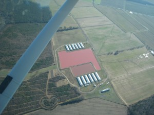 View of North Carolina CAFO from aair