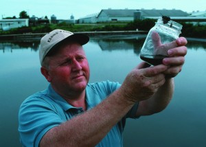 Water sample taken from a manure lagoon in Taylor County, Iowa.