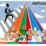 USDA MyPyramid, 2005