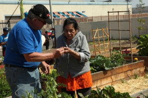 Elysian Valley Community Garden