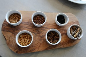 Edible insects at Grub Kitchen, UK.